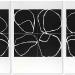 1-3-x-schwarze-blume-a